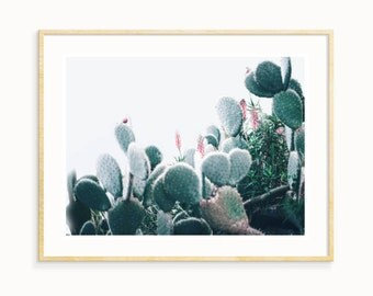 Cactus Poster Print, California Cactus, Desert Decor, Southwestern Print, California Desert Print, Cactus Digital Print, Cacti Wall Art