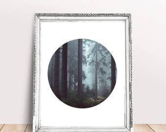 Forest Print, Circle Photography Printable Wall Art, Forest Printable Art, Nature Circle Print, Minimalist Geometric Printable Photo Art