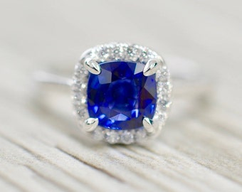 Cushion Sapphire in a French Pavé Ultra Petite Solitaire Engagement Ring in White