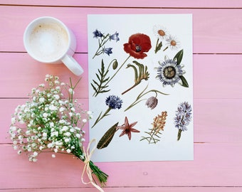 Wildflowers Vintage Print - Botany Illustration - Printable Art - Instant Download
