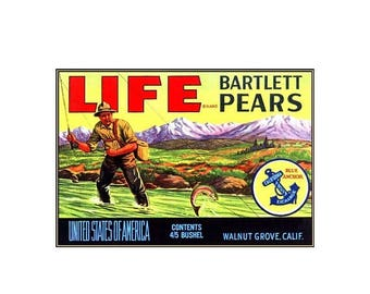 Life Bartlett Pears California Vintage Poster Print Retro Style Fisherman Fruit Crate Label Free Us Post Low EU & CA Post Buy 3 Get 1 Free