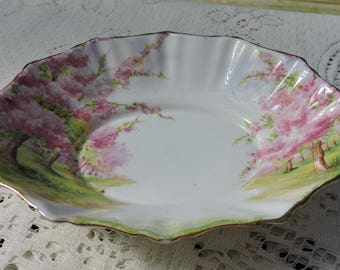 Royal Albert BLOSSOM TIME Oval Sweet Meat or Candy Dish Bone China England