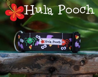 "Halloween Dog Collar ""Silly Spiders""  Medium, Large, Wide, Adjustable // FREE SHIPPING"