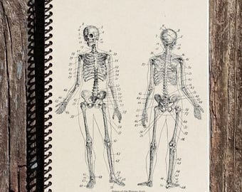 SALE - Skeletal Anatomy Journal - Skeletal Anatomy Notebook - Skeleton - Bones