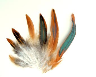 10 Rust brown feathers - Natural brown green feathers for feathers earrings, feather hats, feather hair extensions. UK Seller
