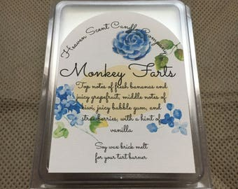 Monkey Farts hand-poured soy wax brick melt