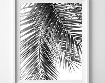 Palm Leaves, Palm Print, Botanical Prints, Tropical Decor, Tropical Wall Art, Exotic Wall Art, Palm Leaf, Black Palm Prints, Black And White