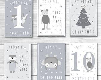 Baby Milestone Cards Printable PDF Print At Home Grey White Unisex Baby Shower Gift Animal Cute