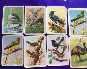 Tuckfields Australiana Series Bird Cards