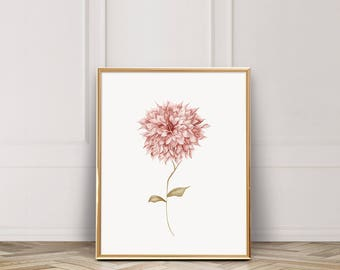 Pink Dahlia / Cafe Dahlia / Watercolor Print / Fine Art Watercolor Art Print / UNFRAMED / 8 x 10 print / 11 x 14 print