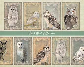Digital Image Owl Cards - Digital collage sheet, Printable Download, Digital Tags, Digital Vintage, ATC Card, Vintage Cards