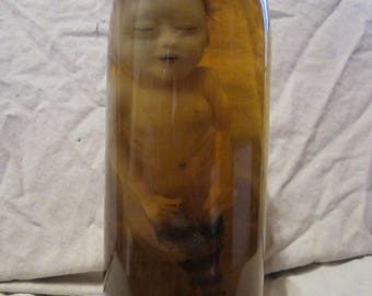 taxidermy cabinet of curiosities fetus taxidermy oddities mermaid siren