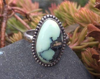 Turquoise Ring, Prince Variscite Ring, Sterling Silver Ring, Variquoise Ring, Size 8 Ring