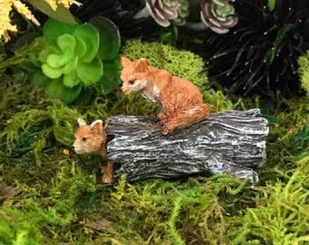 Miniature Foxes Playing on a Hollow Log