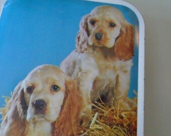 sharps toffee tin puppies