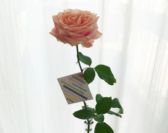 Birthday card (8x8 cm) with a pastel pattern design. Perfect for the bouquet. Gratulationskort, födelsedagskort.