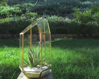 Large Gold Geometric Succulent Planter Terrarium Greenery Kit with Purple Amethyst