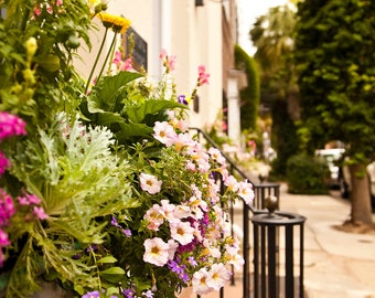 charleston decor. Charleston Photography  SC Photo Home Decor art decor Etsy