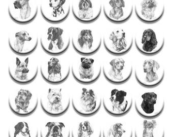 A pack of 4 Mike Sibley Fine art pencil sketches of dogs design Pattern weights fabric weights