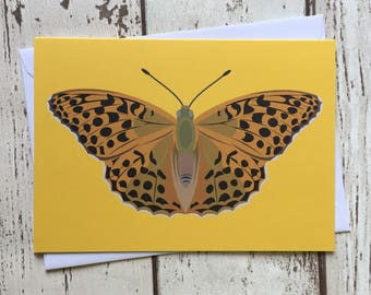 Silver-washed fritillary butterfly greeting card - blank inside