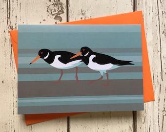 Oystercatcher birds greeting card - blank inside