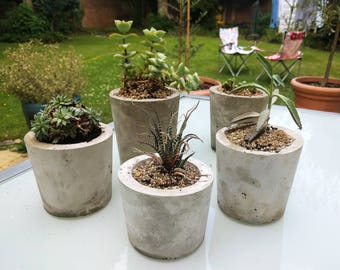 Cement Pot - Concrete plant pot / Cement Planter