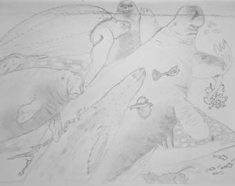 Seascape Graphite Drawing