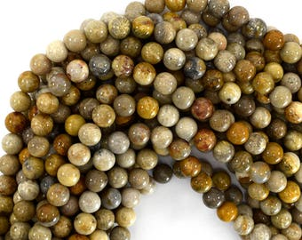"""8mm fossil coral round beads 15.5"""" strand 39223"""