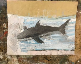 Still life study, plastic shark