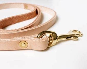 Custom Dog Leash for MioShiModa