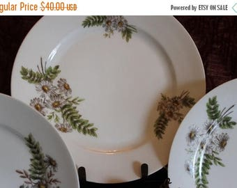 """SALE Set of 3 Antique Charles Field Haviland 9.5"""" Luncheon Plates  - CFH GDM, Daisy and Fern Pattern, French Limoges"""