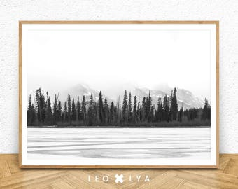 Black and White Forest Photography, Forest Printable Wall Art, Nature Print, Landscape Prints, Scandinavian Print Art, Forest Art Print