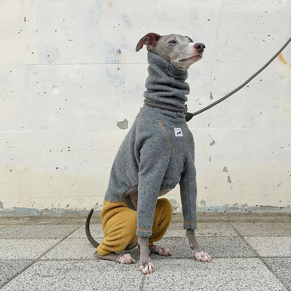 Italian Greyhound Clothing Fleece