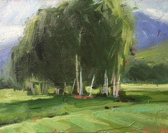 Sun Valley Idaho Trees - Original Plein Air Oil Painting