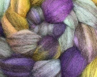 Heathered BFL  Hand Painted Combed Top - Spinning Fiber - Feltable - approx. 4 ounces each - PURPLE SAGE