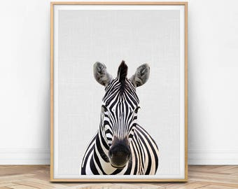Zebra Wall Art, Zebra Print, Animal Photo, Animal Print, Safari Animal Safari Decor, African Animal, Nursery Wall Art, Nursery Animal Art