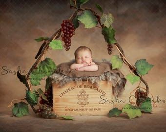 digital backdrop background newborn baby boy or girl wine box grapes vine