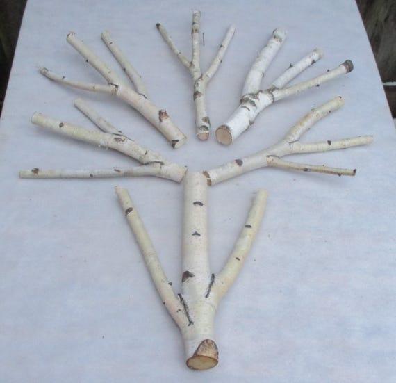 6 unique triple forked wood sticks birch sticks wood for White birch log crafts