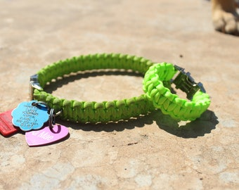 Friendship Dog Collars