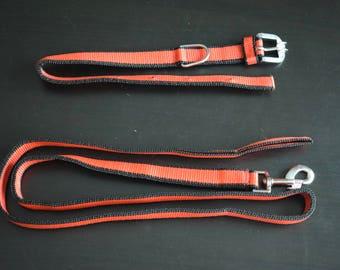 Dog Collar set made of Nylon