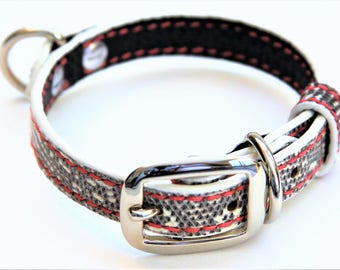 Dog Collar Genuine Lizard White/Pink