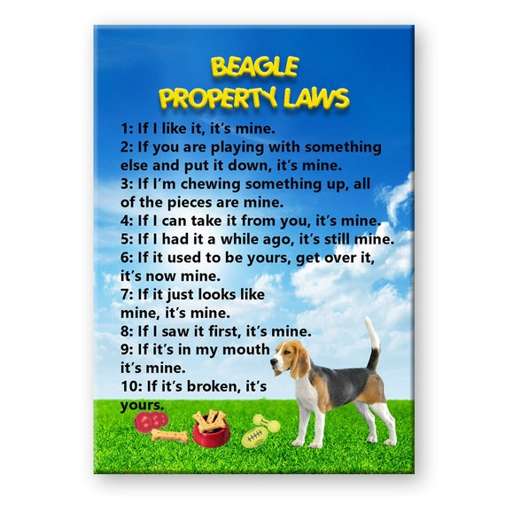 Beagle Property Laws Fridge Magnet