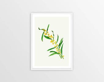 A4, mimosa, Wall art, Decoration, Home decor, Print, Mural Art, botanical, watercolor, herbarium, hand drawn