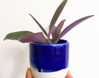 """Porcelain tiny 2"""" planter"""