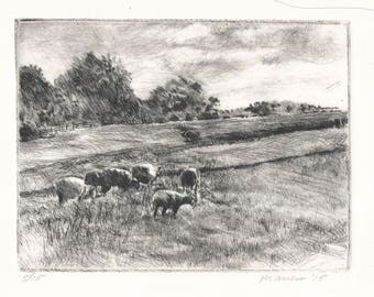 Signed and Matted Etching: Sheep Field In A Field, Mendham, NJ - by Onelio Marrero