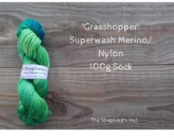 Superwash Merino/Nylon 80/20 Sock yarn 100g in 'Grasshopper' colour way.