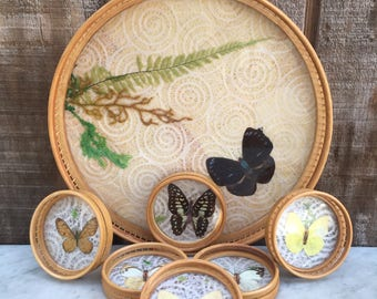 Bamboo Butterfly Tray with 6 Matching Coasters // 1970's Serving Set