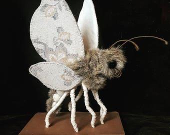 Midnight owl talpa moth