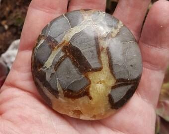 Septarian Palm Stone, Dragon Vein Septarian Nodule, polished, nice crystal vug