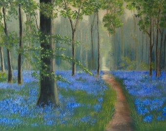 Bluebell Wood. Limited Edition Giclee Print of an Original Pastel Painting. Signed and Mounted. Limited to 100 prints. Woodland Landscape.